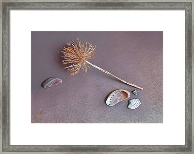 Nature's Memories Framed Print