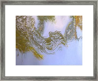 Natures Mirror Framed Print by Florene Welebny