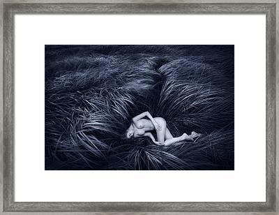 Nature's Nest Framed Print