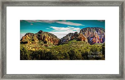 Natures Paintbrush Framed Print by Jon Burch Photography