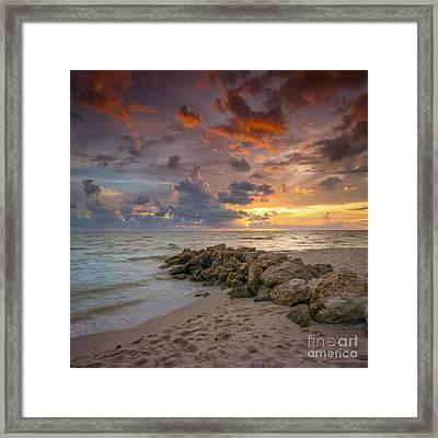 Natures Palette Framed Print by Marco Crupi