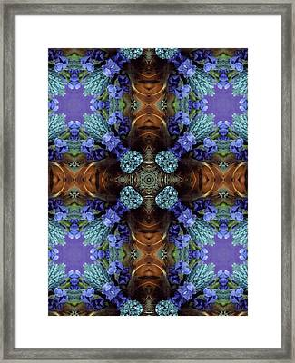 Natures Play Framed Print by Ricky Kendall