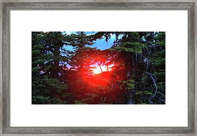Nature's Portal Framed Print by Dave Hampton Photography