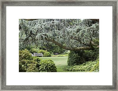Nature's Sanctuary Framed Print by Lyn Steuart