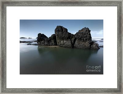 Nature's Sculpture Framed Print by Masako Metz