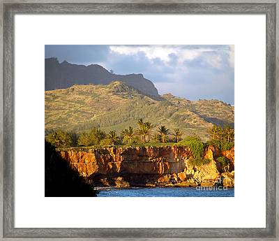 Nature's Sculptures Framed Print by Patricia Griffin Brett