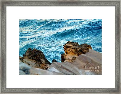 Natures Sculptures Vi Framed Print by Patricia Griffin Brett