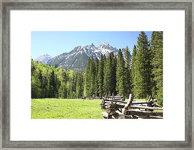 Nature's Song Framed Print