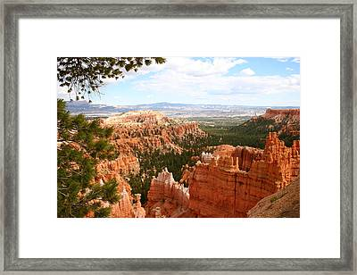Nature's Spendour Framed Print