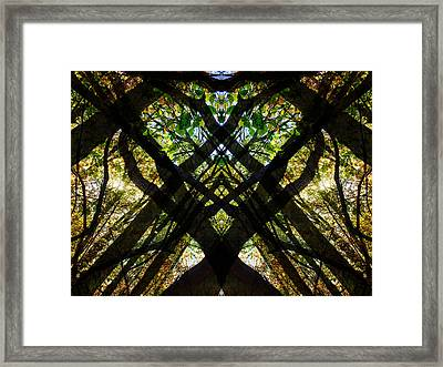 Natures Stain Glass Framed Print