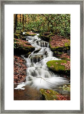 Natures Surprise Framed Print by Debbie Green