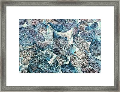 Nature's Tracery Framed Print