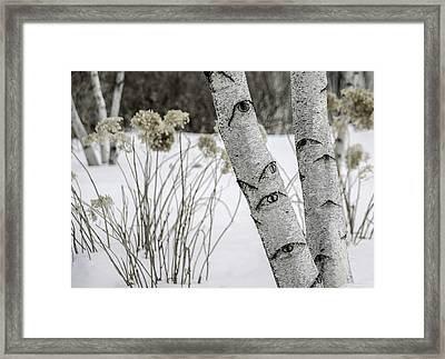 Natures Watchful Eyes Framed Print by Julie Palencia