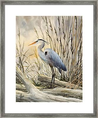 Nature's Wonder Framed Print by James Williamson