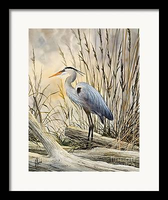 Great Birds Paintings Framed Prints