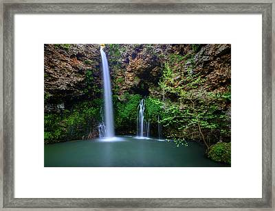 Nature's World Framed Print