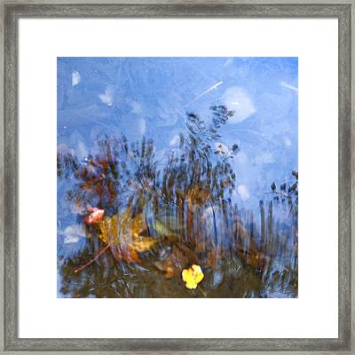 Naturpainting Iv Framed Print by Renata Vogl