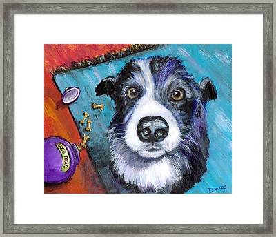 Naughty Border Collie Framed Print by Dottie Dracos
