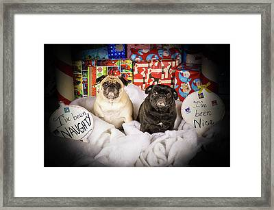 Naughty Or Nice Framed Print by Trish Tritz
