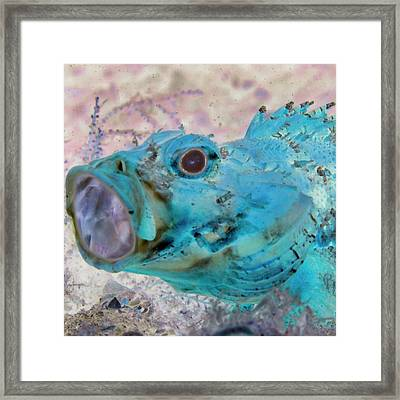 Framed Print featuring the photograph Nautical Beach And Fish #1 by Debra and Dave Vanderlaan