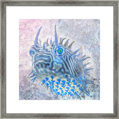 Framed Print featuring the photograph Nautical Beach And Fish #12 by Debra and Dave Vanderlaan