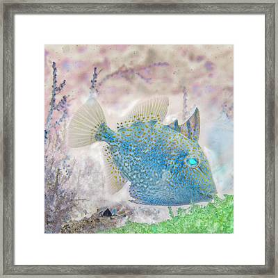 Framed Print featuring the photograph Nautical Beach And Fish #2 by Debra and Dave Vanderlaan