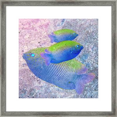 Framed Print featuring the photograph Nautical Beach And Fish #3 by Debra and Dave Vanderlaan
