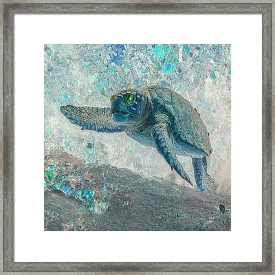 Nautical Beach And Fish #9 Framed Print