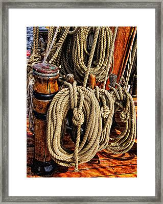 Nautical Knots 16 Framed Print by Mark Myhaver