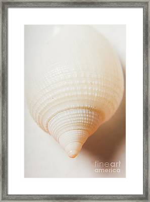 Nautical Simplicity Framed Print by Jorgo Photography - Wall Art Gallery