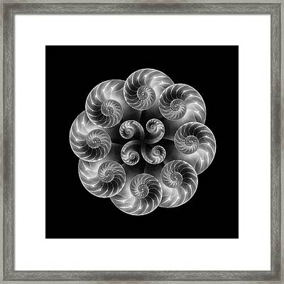 Nautilus Abstract Art Framed Print