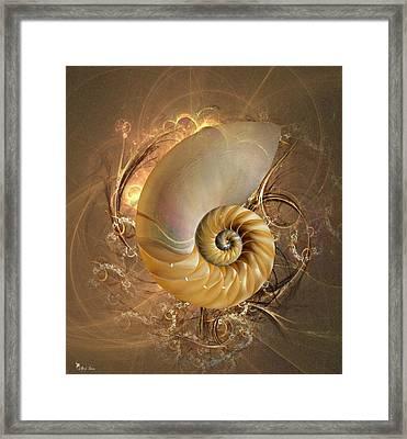 Nautilus Sea Shell Framed Print