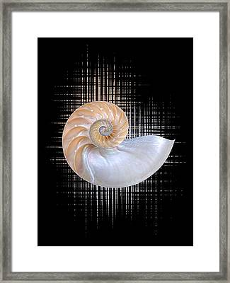 Nautilus Seashell Abstract - Vertical Framed Print by Gill Billington