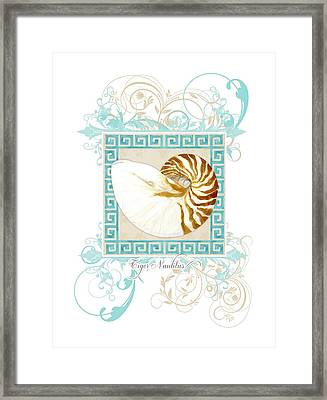 Nautilus Shell Greek Key W Swirl Flourishes Framed Print