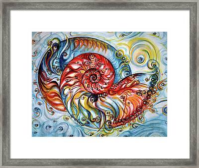 Nautilus Shell - Ocean Framed Print