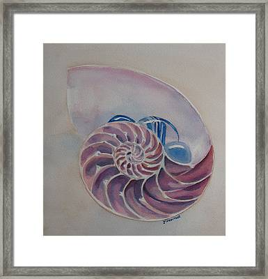 Nautilus With Glass Stones Framed Print by Jenny Armitage
