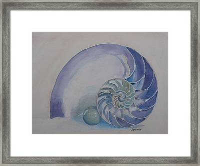 Nautilus With Marble Framed Print by Jenny Armitage