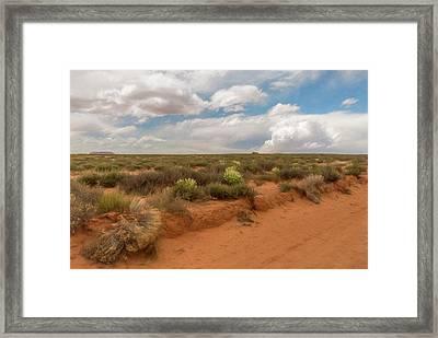 Navajo Reservation Framed Print