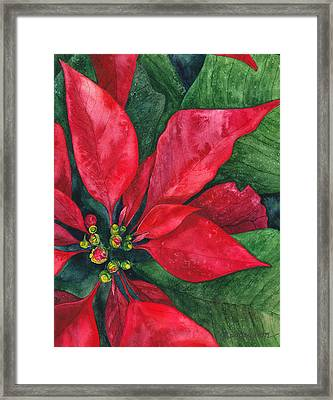 Navidad Framed Print