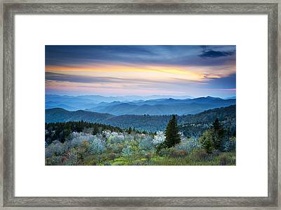 Nc Blue Ridge Parkway Landscape In Spring - Blue Hour Blossoms Framed Print by Dave Allen