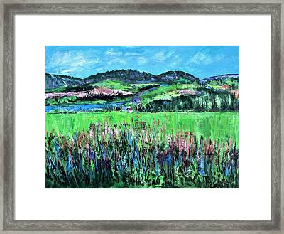 Near Cooperstown Framed Print