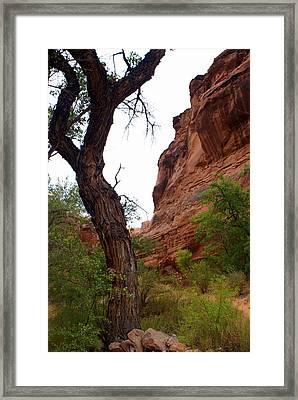 Near Moab 2 Framed Print by Marty Koch