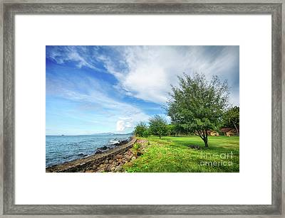 Framed Print featuring the photograph Near The Shore by Charuhas Images