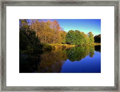 Near To Monticello Ny Framed Print