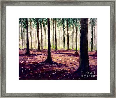 Nearly Winter Forest Up North Framed Print