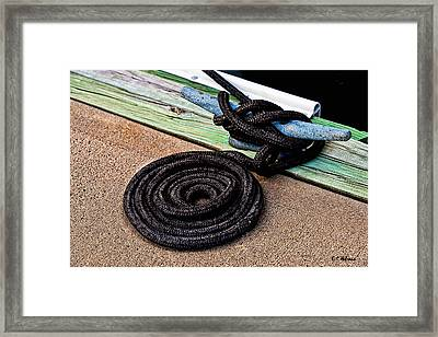 Neatly Tied Framed Print by Christopher Holmes