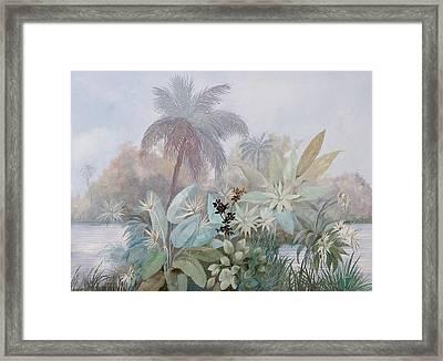 Nebbia Luminosa Framed Print
