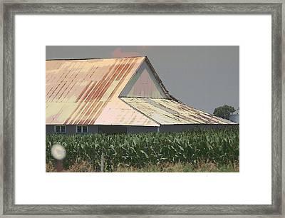 Nebraska Farm Life - The Tin Roof Framed Print