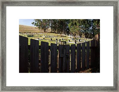 Necessary Discernment Framed Print by Soli Deo Gloria Wilderness And Wildlife Photography