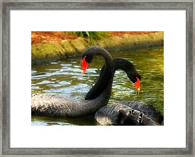 Necking Framed Print